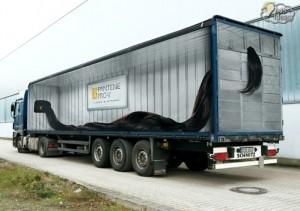 truck graphics for Pantene