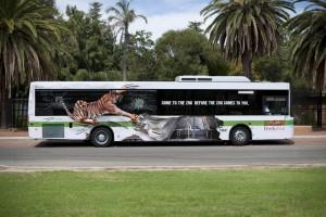 Perth Zoo bus wrap