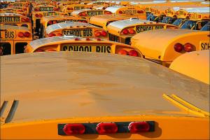 school-bus-advertising