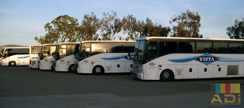 Vista City Vehicle Fleet Wrap