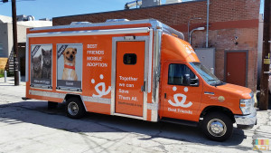 Best friends mobile adoption Truck Wrap