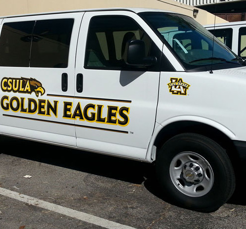 Partial Wrap Golden Eagles